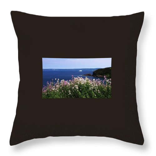 Photograph Iceberg Wild Flower Atlantic Ocean Newfoundland Throw Pillow featuring the photograph Wild Flowers And Iceberg by Seon-Jeong Kim