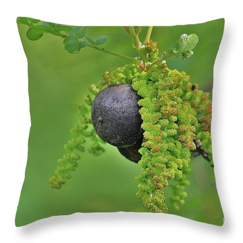 Wild Fruit Throw Pillow featuring the photograph Wild Fruit by Onie Dimaano