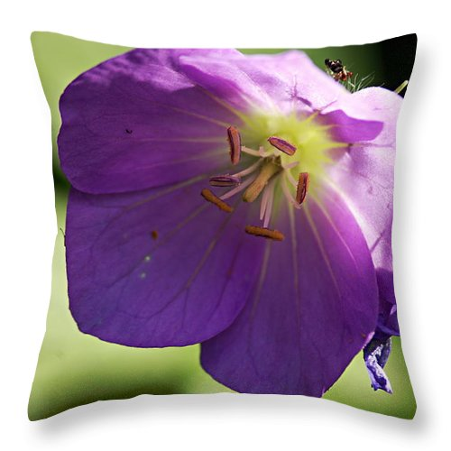 Geranium Throw Pillow featuring the photograph Wild Geranium by Larry Ricker