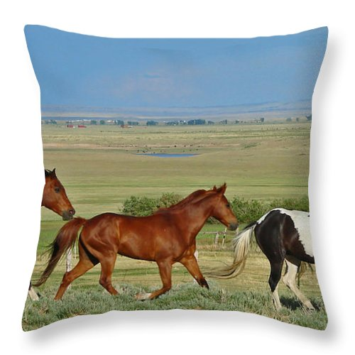 Herd Throw Pillow featuring the photograph Wild Horses Wyoming by Heather Coen