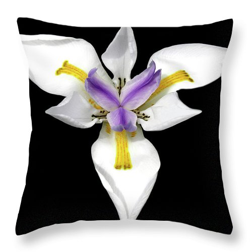 Flower Photos Throw Pillow featuring the photograph Wild Lily by Maria Ollman