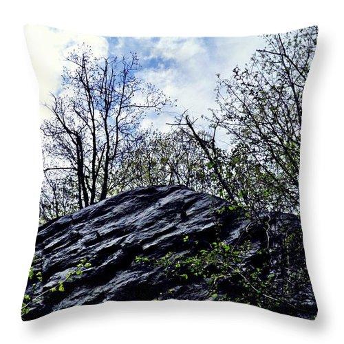 Landscape Throw Pillow featuring the photograph Wild Manhattan 4 by Sarah Loft