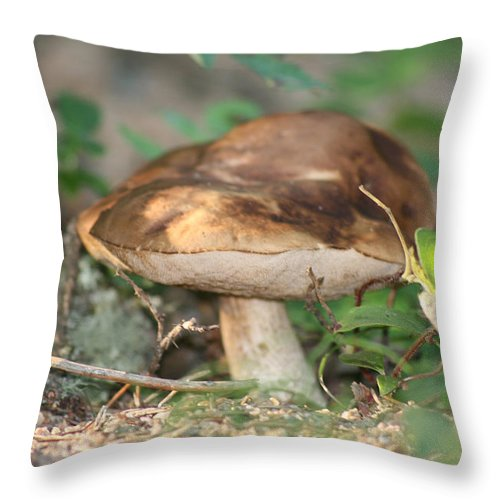 Mushroom Wild Plants Nature Forest Earth Natural Throw Pillow featuring the photograph Wild Mushroom by Andrea Lawrence