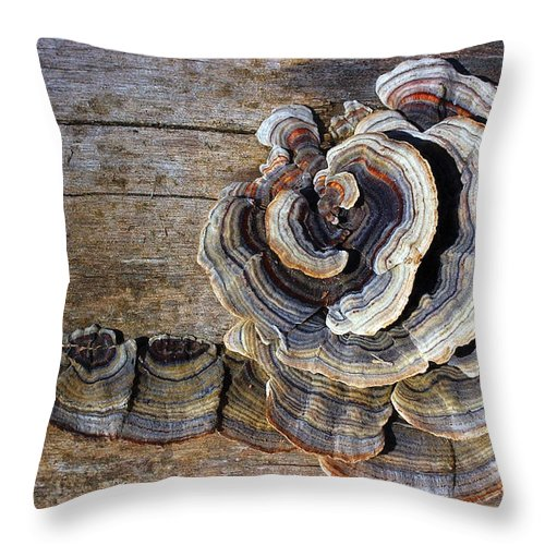 Nature Throw Pillow featuring the photograph Wild Mushroom by Steve Somerville