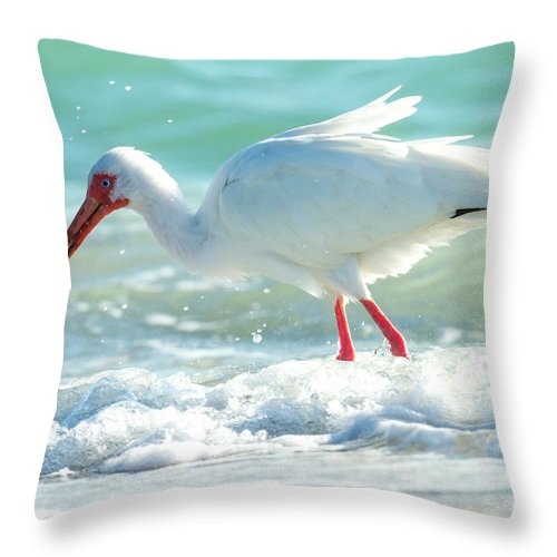 Ibis Throw Pillow featuring the photograph Wild Winds by Betsy Knapp