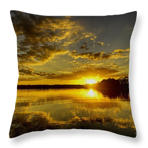 Wildcat Throw Pillow featuring the photograph Wildcat Sunset by Tress Chapin