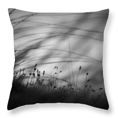 Mood Throw Pillow featuring the photograph Wilderness by Dorit Fuhg