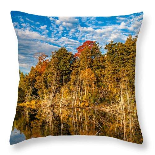 Steve Harrington Throw Pillow featuring the photograph Wilderness Pond by Steve Harrington