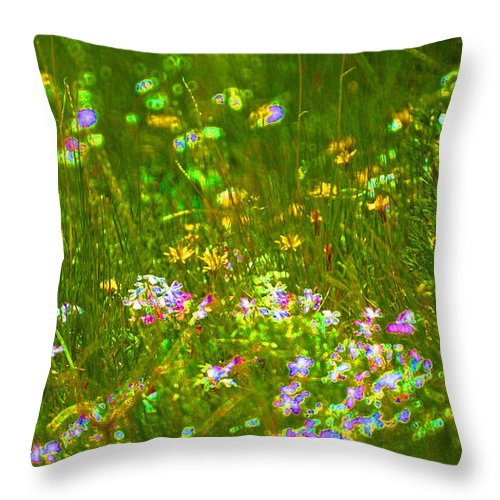 Wildflower Throw Pillow featuring the photograph Wildflower Field by Heather Coen