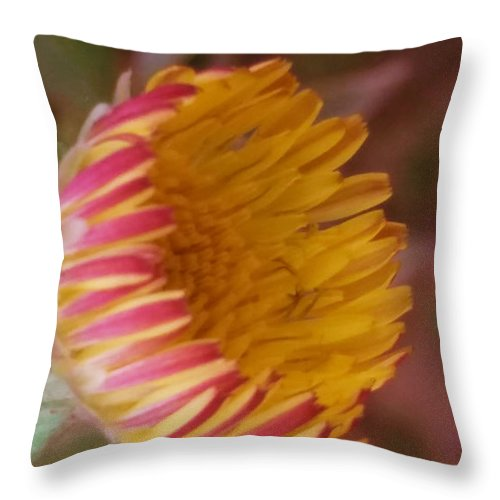 Wildflower Throw Pillow featuring the photograph Wildflower by Nilu Mishra