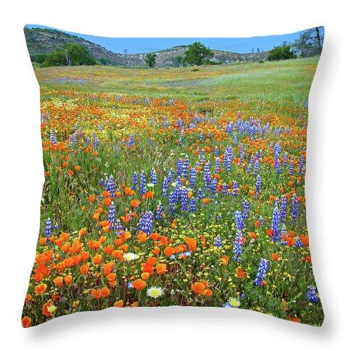 Wildflowers Throw Pillow featuring the photograph Wildflower Wonderland 4 by Lynn Bauer