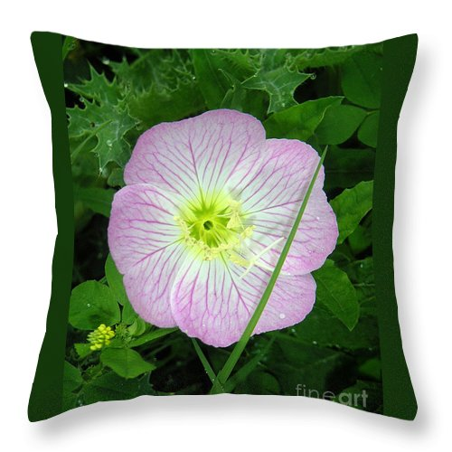 Nature Throw Pillow featuring the photograph Wildflowers - In The Pink by Lucyna A M Green