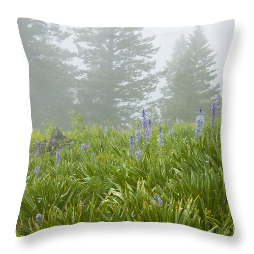 Wildflowers Throw Pillow featuring the photograph Wildflowers And Fog by Idaho Scenic Images Linda Lantzy