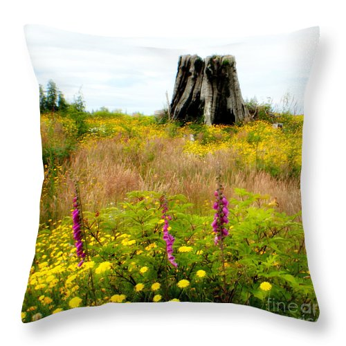 Stump Throw Pillow featuring the photograph Wildflowers by Idaho Scenic Images Linda Lantzy