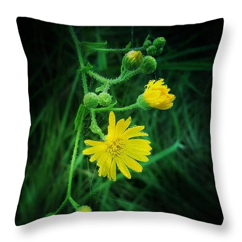 Wildly Yellow Throw Pillow featuring the photograph Wildly Yellow by Maria Urso