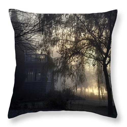 Fog Throw Pillow featuring the photograph Willow In Fog by Tim Nyberg