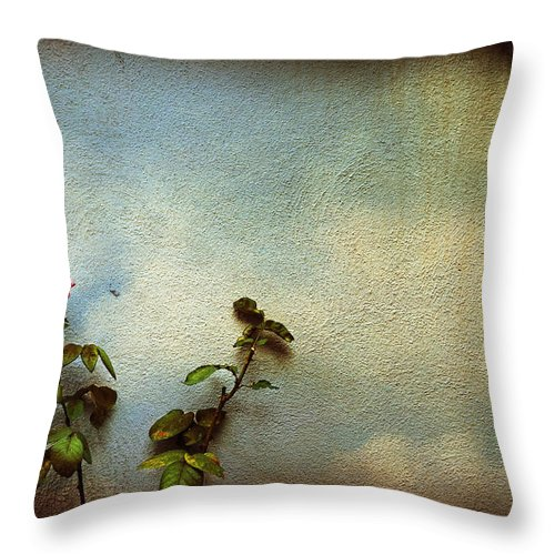 Rose Throw Pillow featuring the photograph Wilting Rose by Silvia Ganora