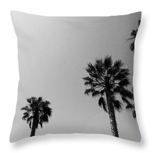 Palm Trees Throw Pillow featuring the photograph Wind In The Palms- By Linda Woods by Linda Woods