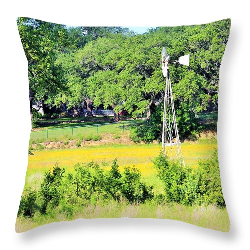 Throw Pillow featuring the photograph wind mill N weeds by Jeff Downs