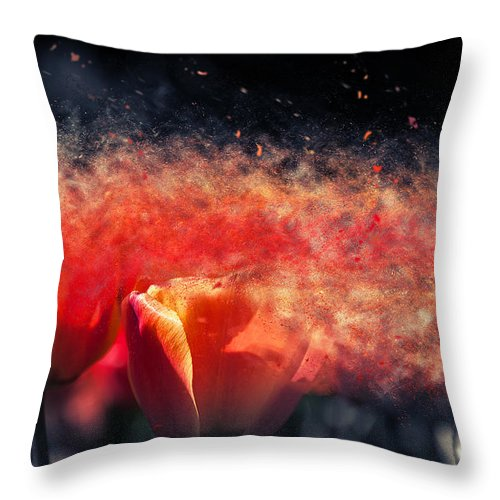 Fine Art Throw Pillow featuring the digital art Wind Of Change by Lukasz Jarocki