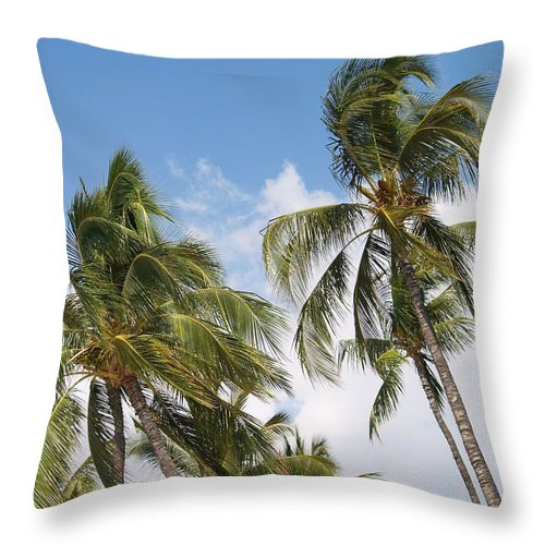 Scenic Throw Pillow featuring the photograph Wind Though The Trees by Athala Carole Bruckner