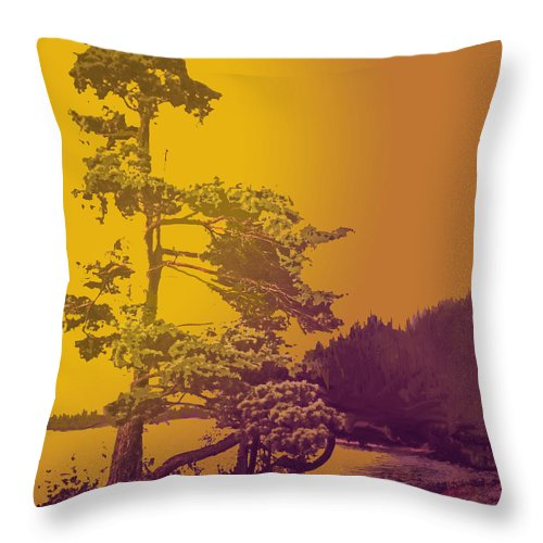 Pine Throw Pillow featuring the photograph Windblown At Twilight by Ian MacDonald