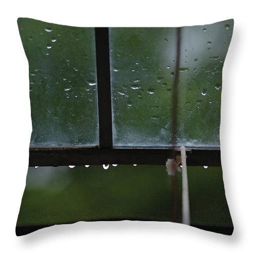 Window Throw Pillow featuring the photograph Window And Raindrops-2 by Steve Somerville