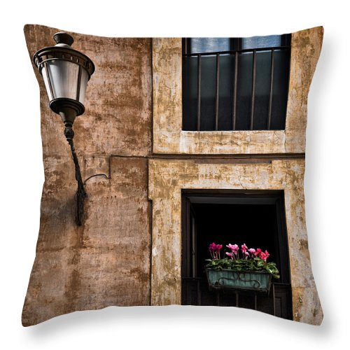 Window Box Throw Pillow featuring the photograph Window Box by Dave Bowman