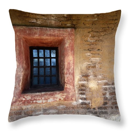 Architecture Throw Pillow featuring the photograph Window Detail 2 by Bob Christopher