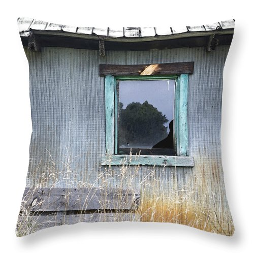 Window Throw Pillow featuring the photograph Window Framed In Aqua by Glennis Siverson