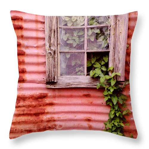 Window Throw Pillow featuring the photograph Window Of Ivy by Andrew Giovinazzo