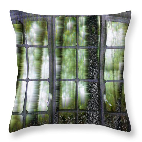 Window On The Woods Throw Pillow featuring the digital art Window On The Woods by Seth Weaver