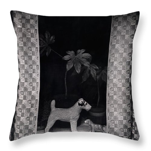 Photograph Throw Pillow featuring the photograph Window Scene by Charles Stuart