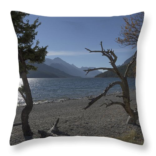 Windswept Throw Pillow featuring the photograph Windswept by Len Moser