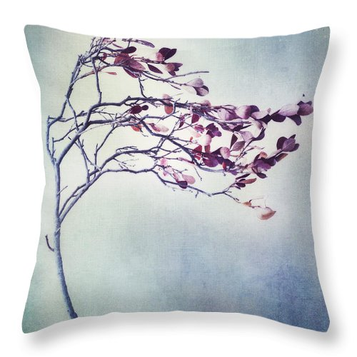 Blueberry Branch Throw Pillow featuring the photograph Windswept by Priska Wettstein