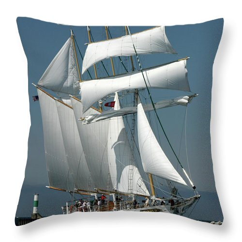 Photography Throw Pillow featuring the photograph Windy II by Frederic A Reinecke