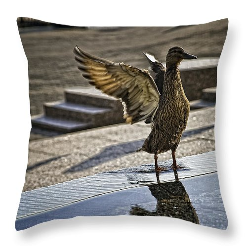 Bird Throw Pillow featuring the photograph Winged Bird by Madeline Ellis