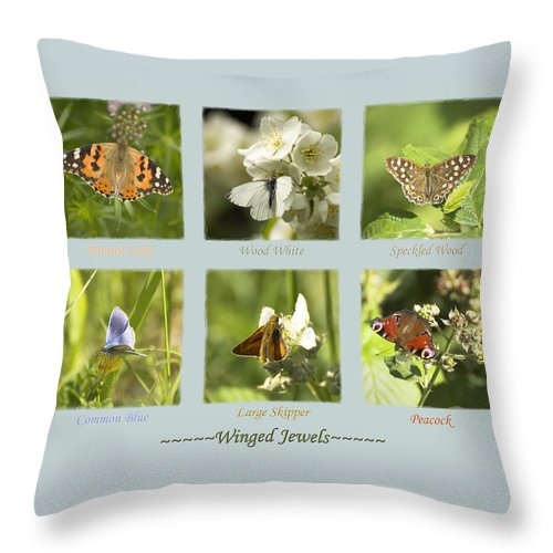 Butterflies Throw Pillow featuring the photograph Winged Jewels by Hazy Apple