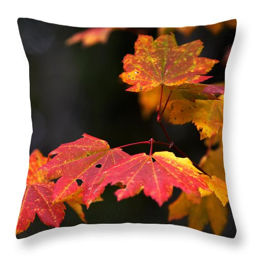 Floral Throw Pillow featuring the photograph Winter Approaches... by Randall Ingalls