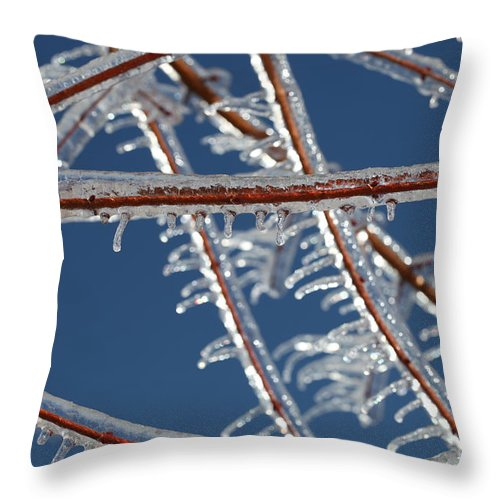 Winter Throw Pillow featuring the photograph Winter Blue by Nadine Rippelmeyer
