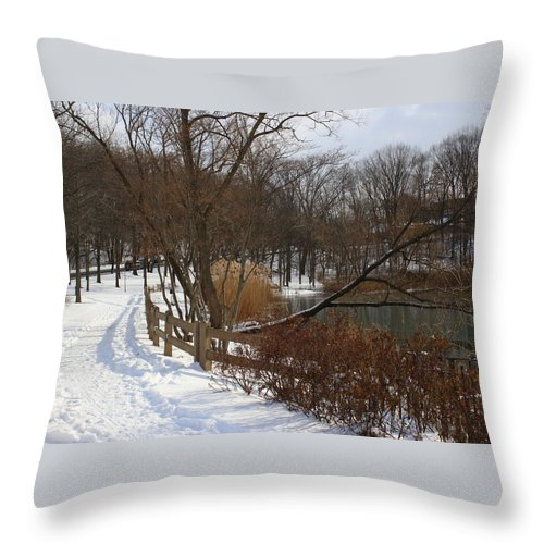 Winter Throw Pillow featuring the photograph Winter By The Lake by Dora Sofia Caputo Photographic Design and Fine Art
