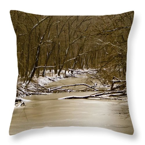 Creek Throw Pillow featuring the photograph Winter Creek by Bonnie Willis