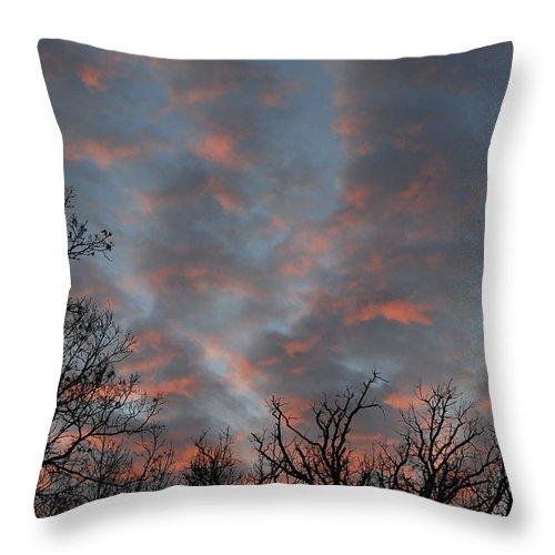 Winter Dusk Throw Pillow featuring the photograph Winter Dusk by David Jacobi