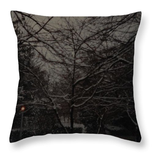 Lights Throw Pillow featuring the photograph Winter Dusk by Rob Hans