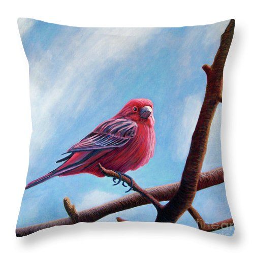Bird Throw Pillow featuring the painting Winter Finch by Brian Commerford