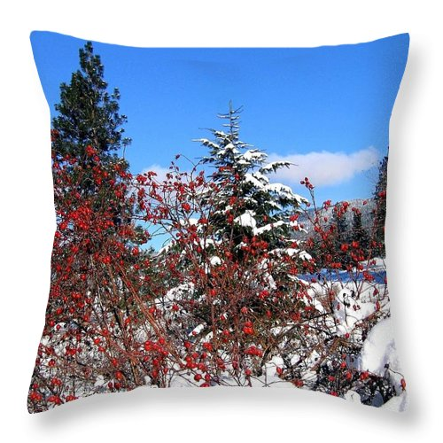 Landscape Throw Pillow featuring the photograph Winter Haven by Will Borden