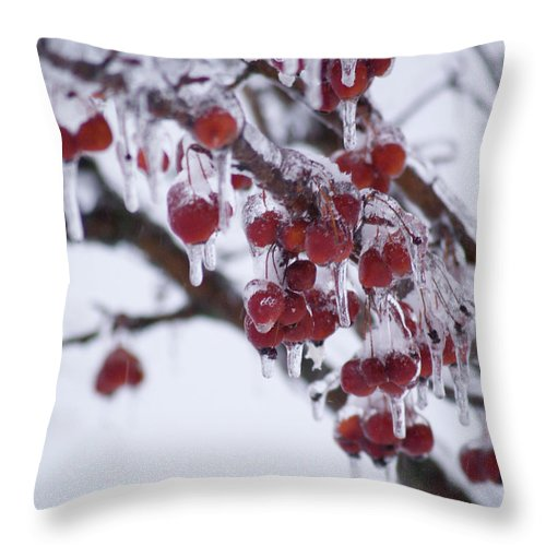 Ice Throw Pillow featuring the photograph Winter Ice Berries by Richard Larson