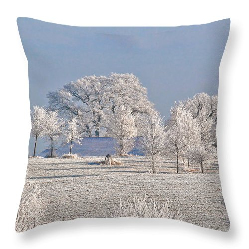Canada Throw Pillow featuring the photograph Winter In Canada by Christine Till