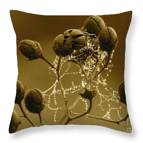 Droplets Throw Pillow featuring the photograph Winter Jewels by Carol Groenen