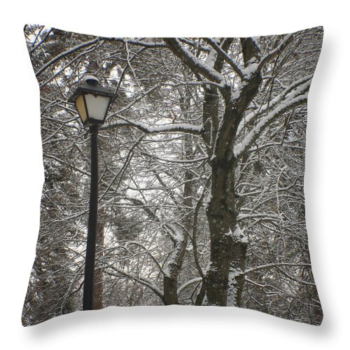 Lamp Throw Pillow featuring the photograph Winter Lamp Post by Idaho Scenic Images Linda Lantzy